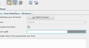 custom-browser-support-300x161