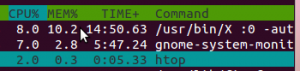 comparing-gnome-system-monitor-and-htop-300x71