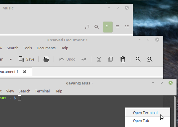 Mint-Y-theme-featuring-on-few-user-applications-Linux-Mint-18